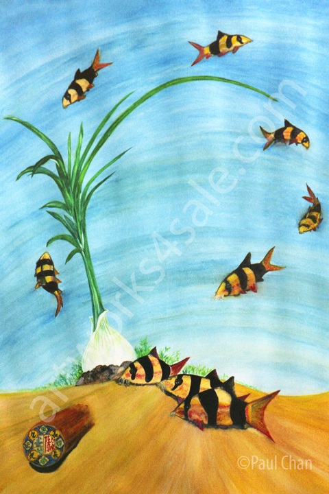 Clown-Loaches-Giclee-Art-Prints