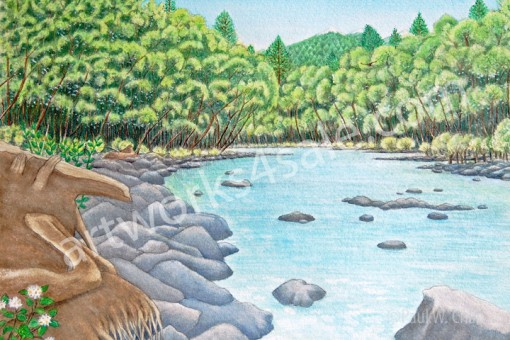 Elwha-River-2-Giclee-Art-Prints