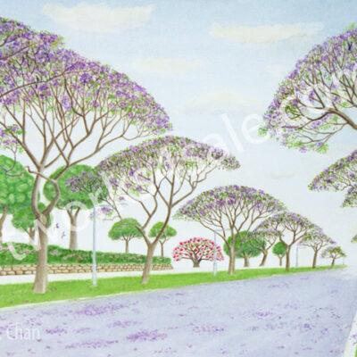 Jacaranda-Street-Giclee-Art-Prints