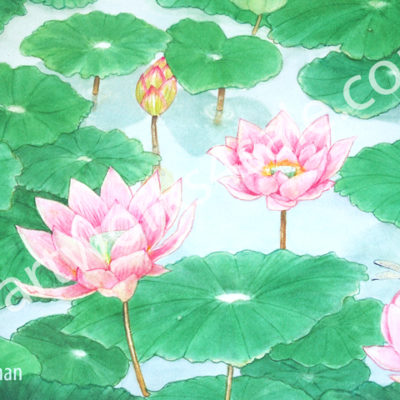 Lotus-Pond-Giclee-Art-Prints