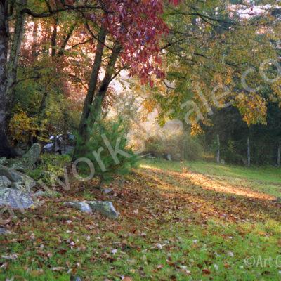 Morning-Light-Photo-Prints