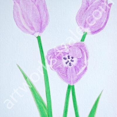 Purple-Tulips-Giclee-Art-Prints