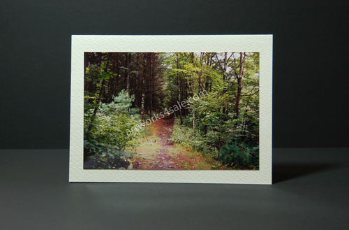 The-Path-Photo-Cards