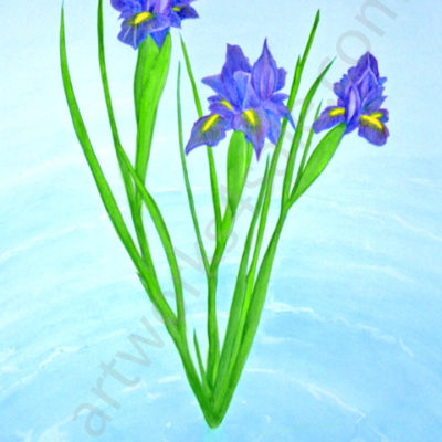 Water-Iris-Giclee-Art-Prints