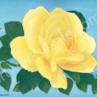 Yellow-Rose-1-Giclee-Art-Prints