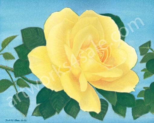 Yellow-Rose-1-Giclee-Art-Prints